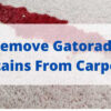 Get Gatorade Stains Out Of Carpet