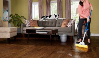 cleaning pet urine from vinyl plank flooring