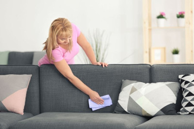 best way to clean fabric sofa